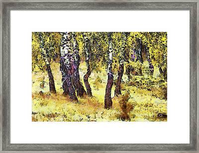 The Birch Forest Framed Print by Odon Czintos