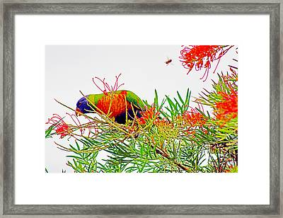 The Bird And The Bee Framed Print