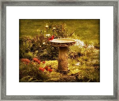 The Birdbath Framed Print