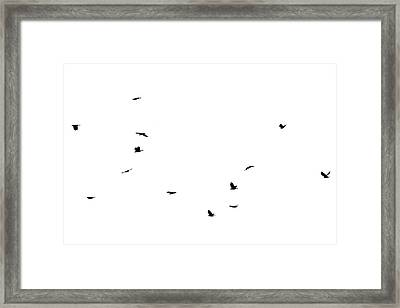 The Birds Framed Print by Jessica Brown