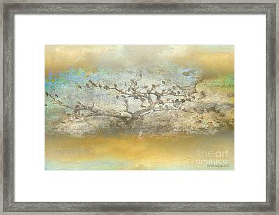 Framed Print featuring the photograph The Birdy Tree by Chris Armytage