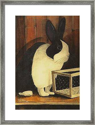 The Black And White Dutch Rabbit  2 Framed Print