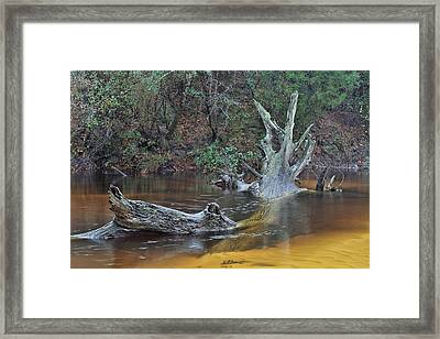 The Black Water River Framed Print