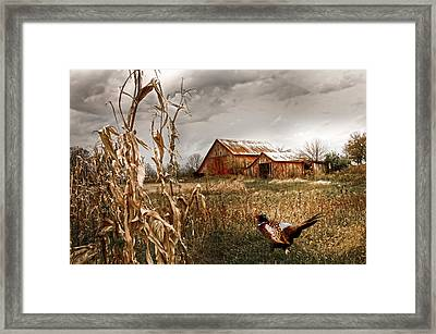 The Blast Off Underfoot Framed Print by Randall Branham