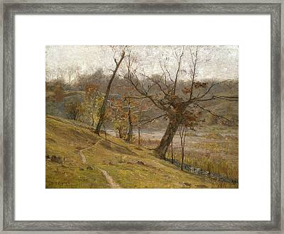 The Bloom Of The Grape Framed Print