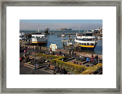 The Blue And Gold Fleet Ferry Boat At Pier 39 San Francisco California 5d26044 Framed Print by Wingsdomain Art and Photography