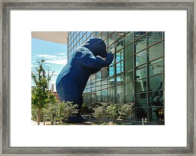 The Blue Bear  Framed Print