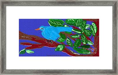 The Blue Bird Framed Print by Sherry  Hatcher