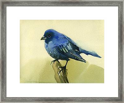 The Blue Birdie Framed Print by Tatiana Zubareva
