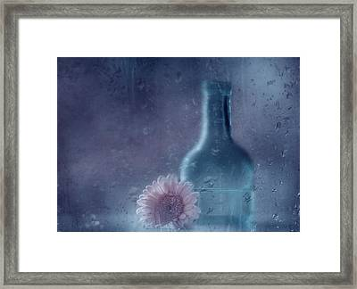 The Blue Bottle Framed Print