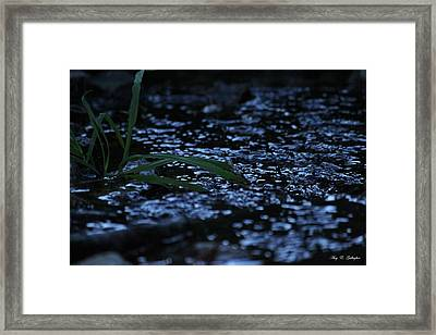 The Blue Creek Framed Print
