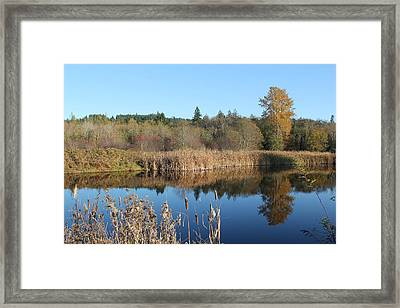Framed Print featuring the photograph The Blue Mirror by E Faithe Lester