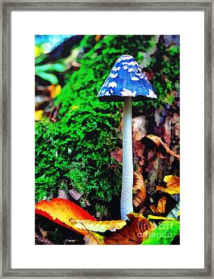The Blue Mushroom Framed Print by Odon Czintos