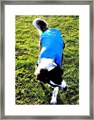 The Blue Shadow Framed Print