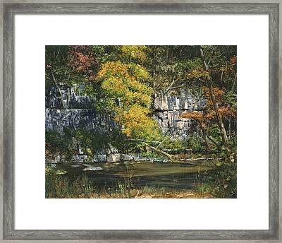 The Bluffs River Trail Framed Print by Don  Langeneckert