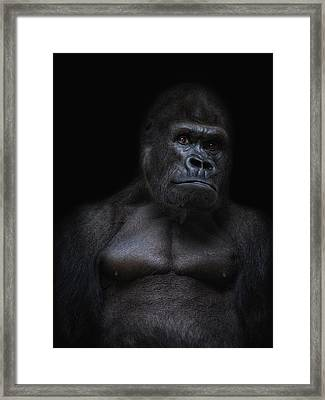 The Body Framed Print by Joachim G Pinkawa
