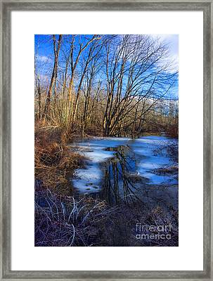 The Bog Framed Print