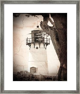 The Bold Framed Print