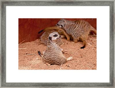 The Bored Babysitter Framed Print by Michelle Wrighton