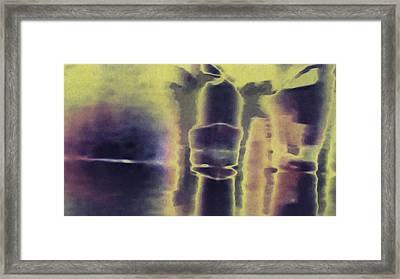 The Boxer Framed Print by Jim Zimmerman