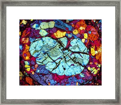 The Brain Framed Print by Tom Phillips