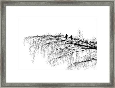 The Branch Of Reconciliation Framed Print by Alexander Senin