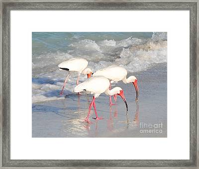 The Breakfast Club Framed Print by Margie Amberge
