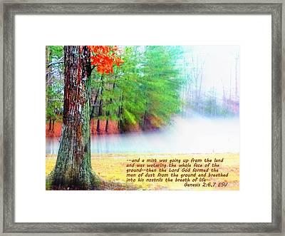 The Breath Of Life Framed Print by Pamela Hyde Wilson