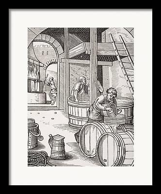 Fermentation Drawings Framed Prints