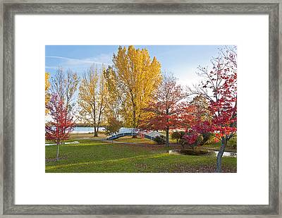 The Bridge In Autumn Framed Print by Celso Bressan
