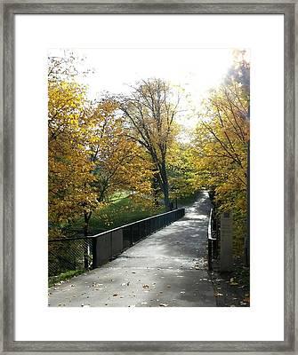 The Bridge Of Hope Framed Print