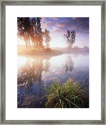 The Bright Light Framed Print by Ray Mathis