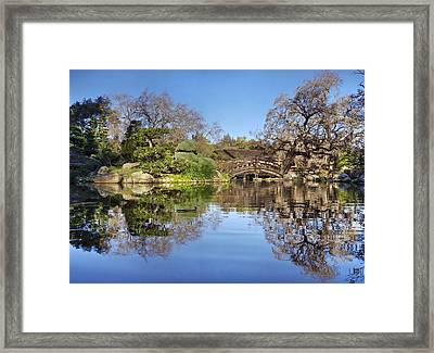 The Bright Side Of The Earth Framed Print by Peter Thoeny