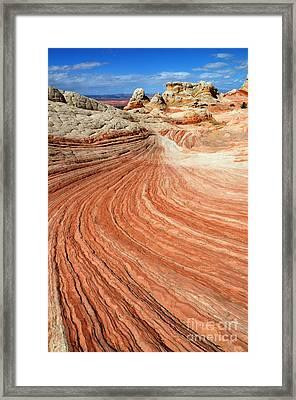 The Brilliance Of Nature 3 Framed Print