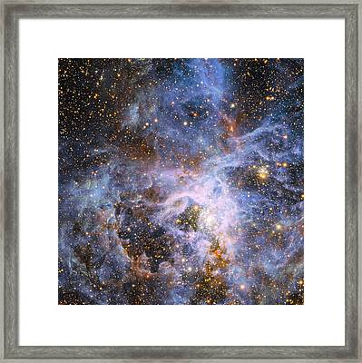 The Brilliant Star Vfts 682 In The Lmc Framed Print by Nasa