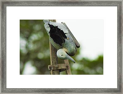 Framed Print featuring the photograph The Broken Duck  by Naomi Burgess