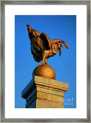 The Bronze Rooster Framed Print by Olivier Le Queinec