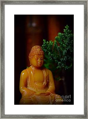 The Buddha Knows Framed Print by Paul Ward