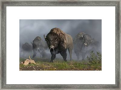 The Buffalo Vanguard Framed Print