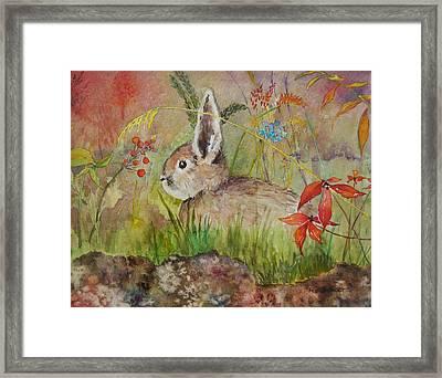 The Bunny Framed Print
