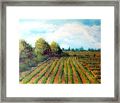 The Butter Bean Patch Framed Print