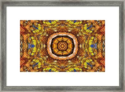 The Butterfly Effect Framed Print by Dan Sproul