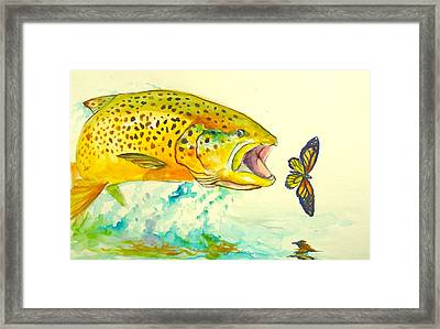 The Butterfly Effect  Framed Print by Yusniel Santos