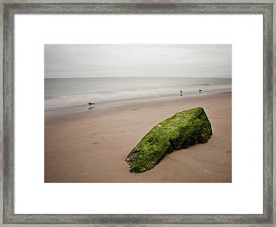The Calm Framed Print by Michael Murphy