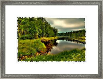 The Calm Of Fly Pond Framed Print by David Patterson