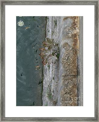 The Canal Water Framed Print by Brenda Brown