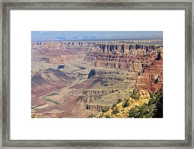 The Canyon Desert View Framed Print by Douglas Miller