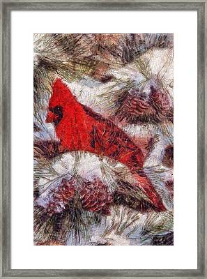 The Cardinal Of Winter Framed Print by Mario Carini