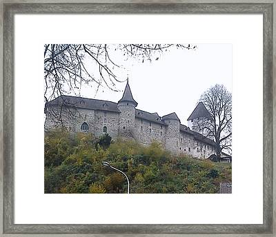 Framed Print featuring the photograph The Castle In Autumn by Felicia Tica