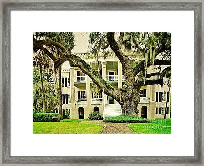 The Cat Guarding The Castle Framed Print